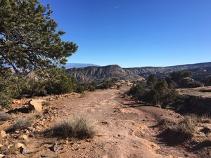 Serpent's Trail